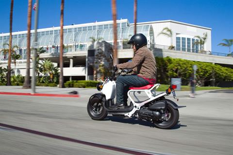 2020 Honda Ruckus in Ukiah, California - Photo 3