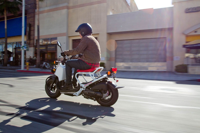 2020 Honda Ruckus in New Haven, Connecticut - Photo 7