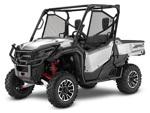 2019 Honda Pioneer 1000 LE in Baldwin, Michigan