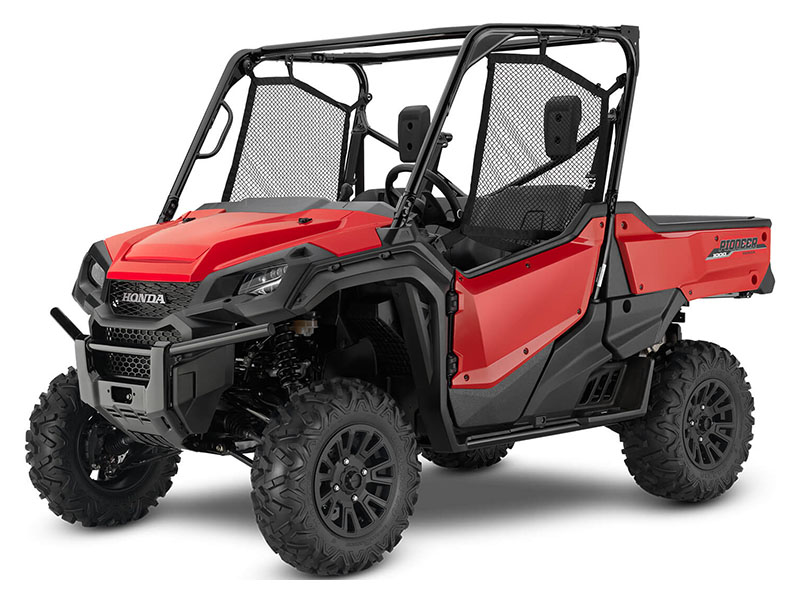 2020 Honda Pioneer 1000 Deluxe in Palatine Bridge, New York - Photo 1