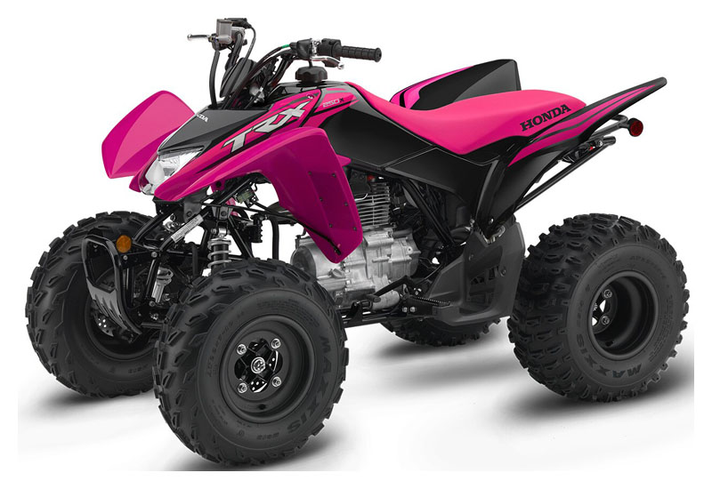 2021 Honda TRX250X in Chico, California