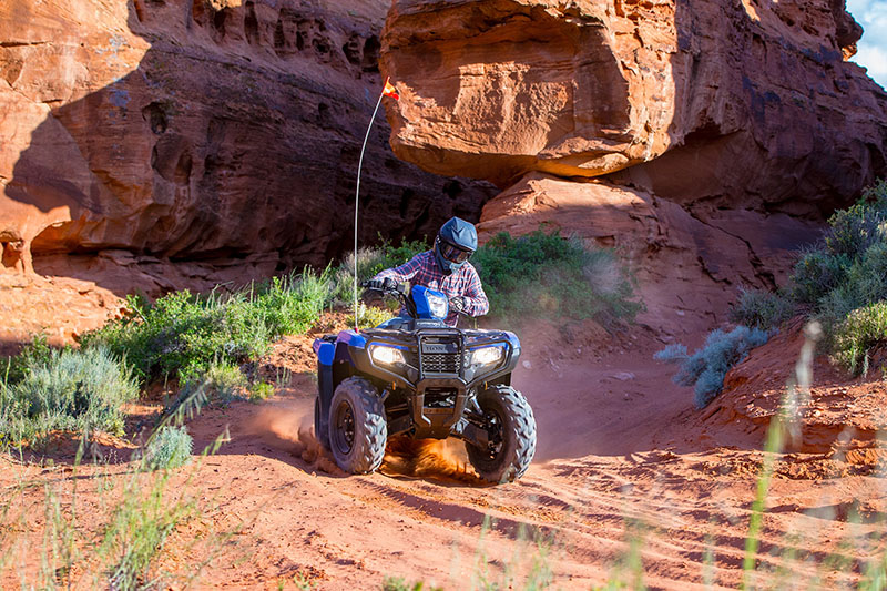 2021 Honda FourTrax Foreman 4x4 EPS in Saint George, Utah - Photo 10