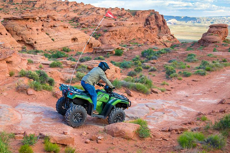 2021 Honda FourTrax Foreman Rubicon 4x4 Automatic DCT EPS in Scottsdale, Arizona - Photo 3