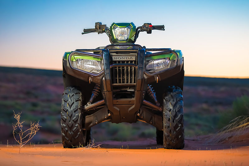 2021 Honda FourTrax Foreman Rubicon 4x4 Automatic DCT EPS Deluxe in Visalia, California - Photo 2