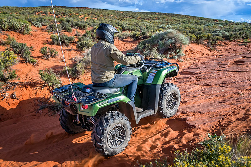 2021 Honda FourTrax Foreman Rubicon 4x4 Automatic DCT EPS Deluxe in Fort Pierce, Florida - Photo 9