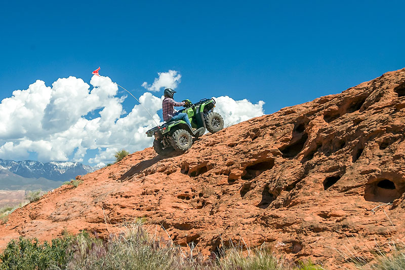 2021 Honda FourTrax Foreman Rubicon 4x4 Automatic DCT EPS Deluxe in Saint George, Utah - Photo 10
