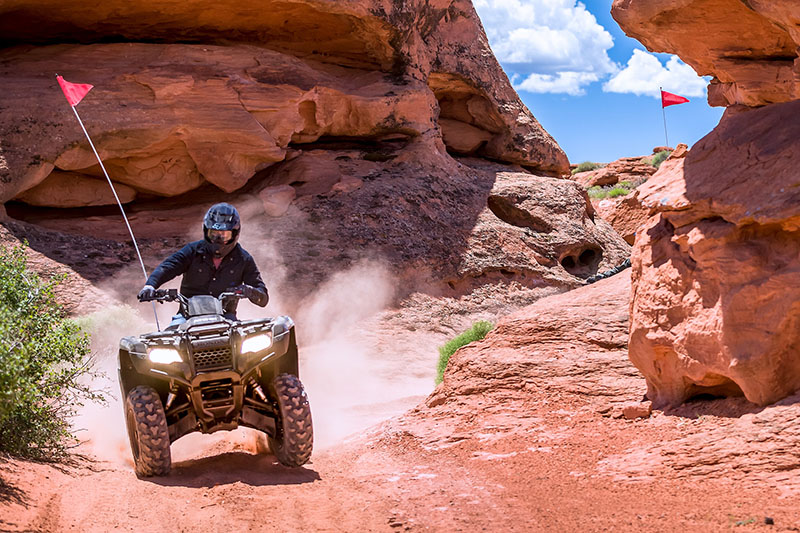 2021 Honda FourTrax Rancher 4x4 Automatic DCT IRS EPS in Cedar City, Utah - Photo 6