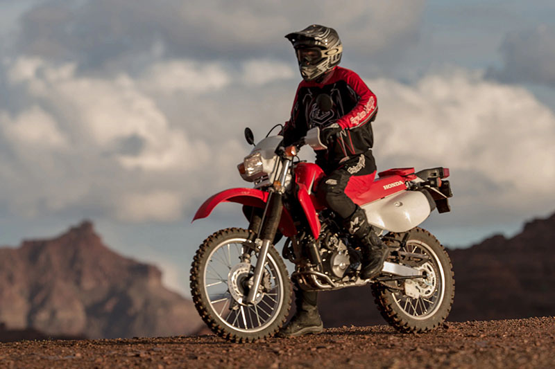 2021 Honda XR650L in Norfolk, Nebraska - Photo 2