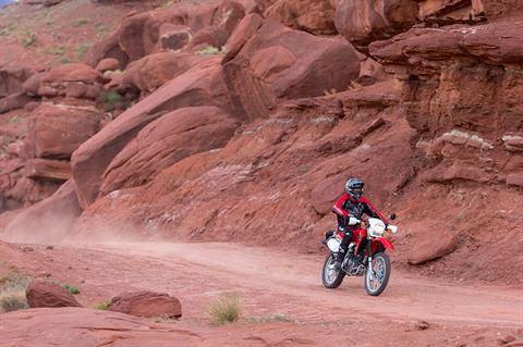 2021 Honda XR650L in Saint George, Utah - Photo 3