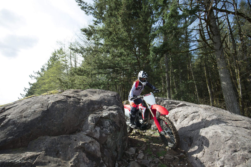 2021 Honda CRF250RX in Monroe, Michigan - Photo 4