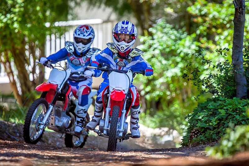 2021 Honda CRF50F in Jamestown, New York - Photo 2