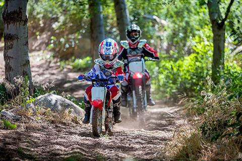 2021 Honda CRF50F in Oak Creek, Wisconsin - Photo 6