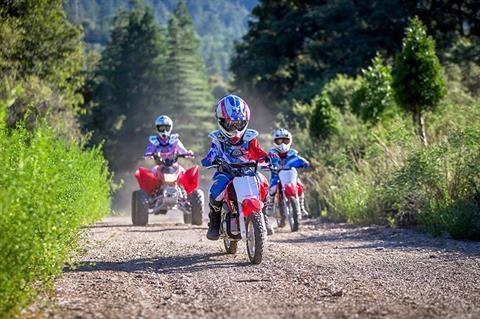 2021 Honda CRF50F in Jamestown, New York - Photo 7