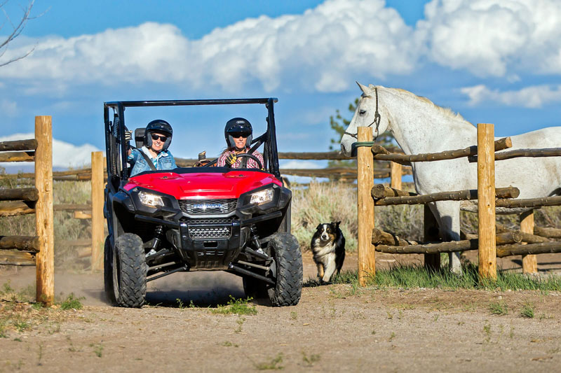2021 Honda Pioneer 1000 Deluxe in New Strawn, Kansas - Photo 4