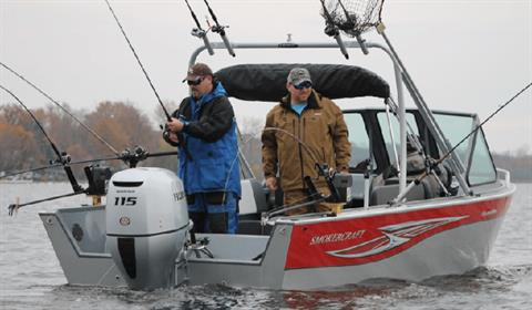 2017 Honda Marine BF115 L Type in Pataskala, Ohio