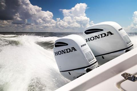 2018 Honda Marine BF250 XX Type in Speculator, New York