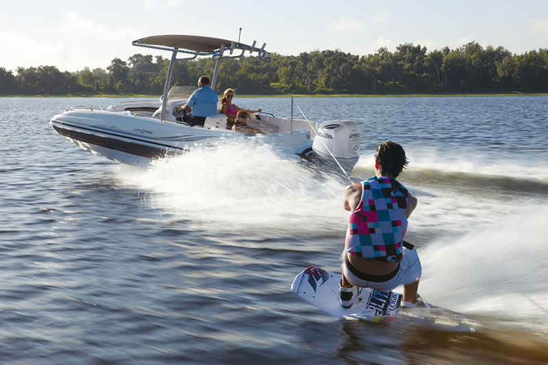2019 Honda Marine BF250 L Type in Escanaba, Michigan