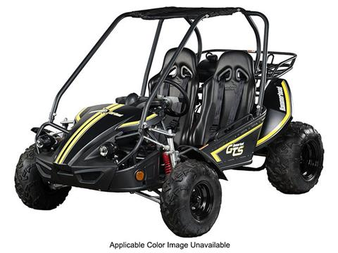 2019 Hammerhead Off-Road GTS 150 in Dearborn Heights, Michigan