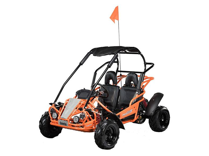 2019 Hammerhead Off-Road MudHead 208R in Woodstock, Illinois