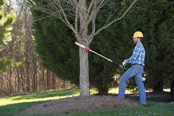 2019 Honda Power Equipment Pruner Attachment in Baldwin, Michigan