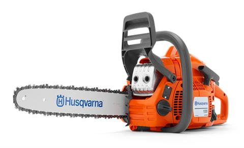 Husqvarna Power Equipment 135 14 in. bar Chainsaw in Barre, Massachusetts