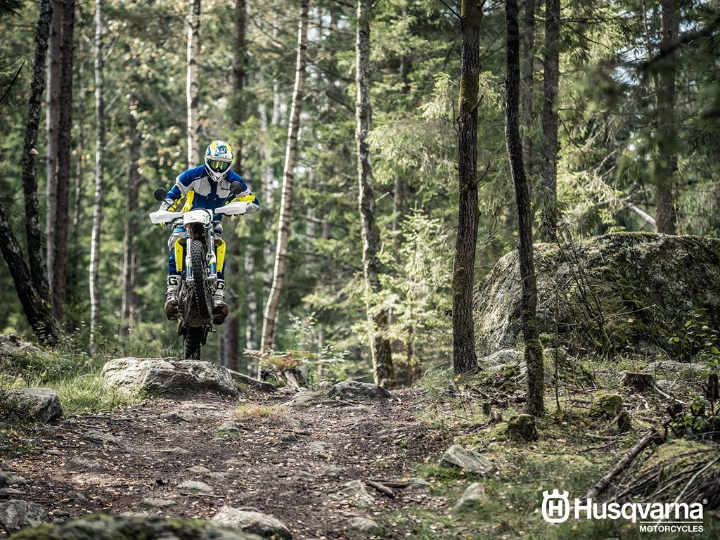 2017 Husqvarna 701 Enduro in Hendersonville, North Carolina