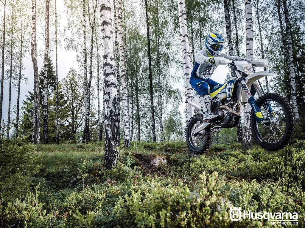2017 Husqvarna FE 501 in Fontana, California