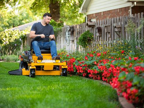 2021 Hustler Turf Equipment Dash 34 in. Briggs & Stratton Powerbuilt 10.5 hp in Jackson, Missouri - Photo 14