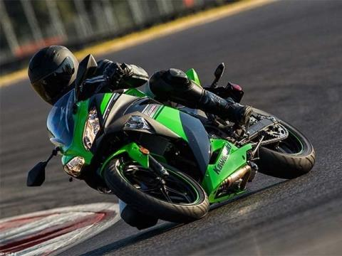 2013 Kawasaki Ninja® 300 in Lafayette, Indiana - Photo 11