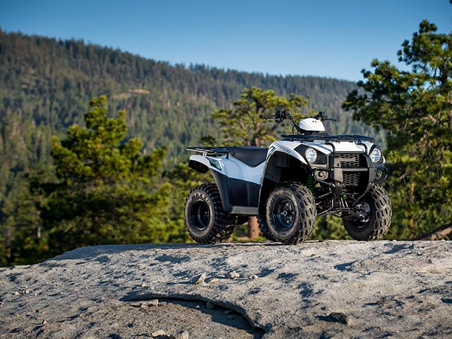 2015 Kawasaki Brute Force® 300 in North Reading, Massachusetts - Photo 9