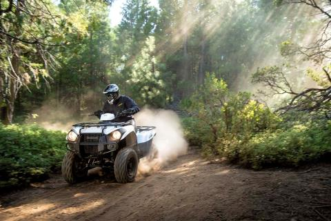 2015 Kawasaki Brute Force® 300 in Romney, West Virginia