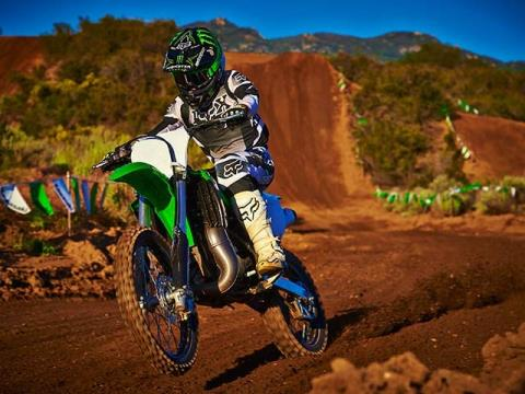2015 Kawasaki KX™100 in North Reading, Massachusetts - Photo 23