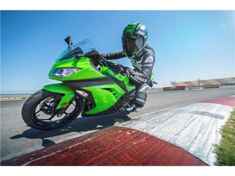2015 Kawasaki Ninja® 300 in North Reading, Massachusetts - Photo 18