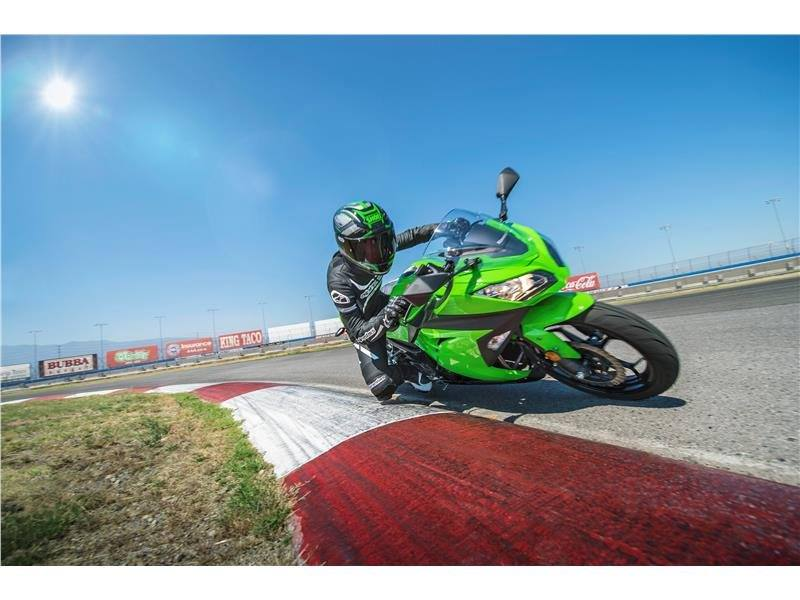 2015 Kawasaki Ninja® 300 in North Reading, Massachusetts - Photo 17