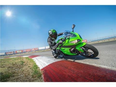 2015 Kawasaki Ninja® 300 in Madera, California - Photo 17