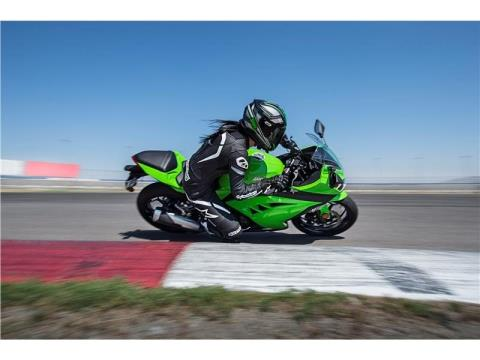 2015 Kawasaki Ninja® 300 in North Reading, Massachusetts - Photo 15