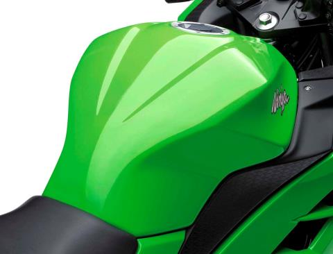 2015 Kawasaki Ninja® 300 in North Reading, Massachusetts - Photo 6