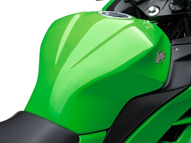 2015 Kawasaki Ninja® 300 ABS in Irvine, California - Photo 14