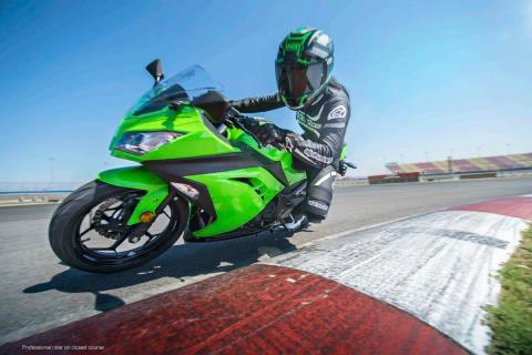 2015 Kawasaki Ninja® 300 ABS in North Reading, Massachusetts - Photo 15