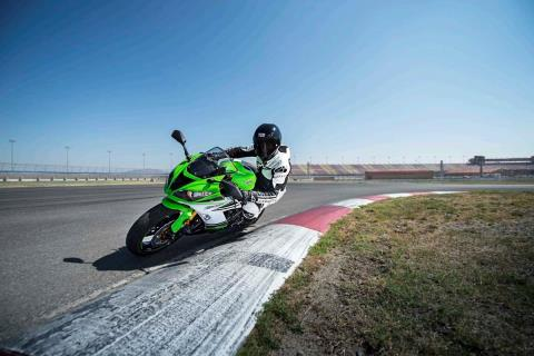 2015 Kawasaki Ninja® ZX™-6R 30th Anniversary in North Reading, Massachusetts - Photo 12