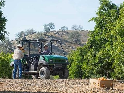 2015 Kawasaki Mule™ 4010 Trans4x4® in North Reading, Massachusetts - Photo 10