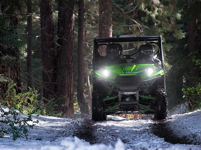 2015 Kawasaki Teryx4™ LE in Romney, West Virginia