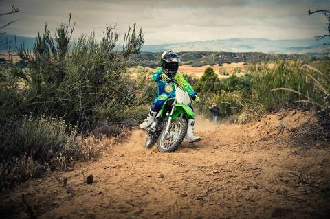 2016 Kawasaki KLX110 in North Reading, Massachusetts - Photo 15