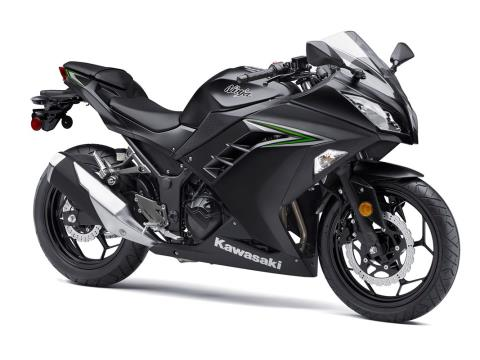 2016 Kawasaki Ninja 300 in Dimondale, Michigan