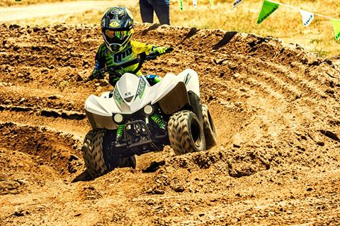 2017 Kawasaki KFX50 in Everett, Pennsylvania - Photo 3