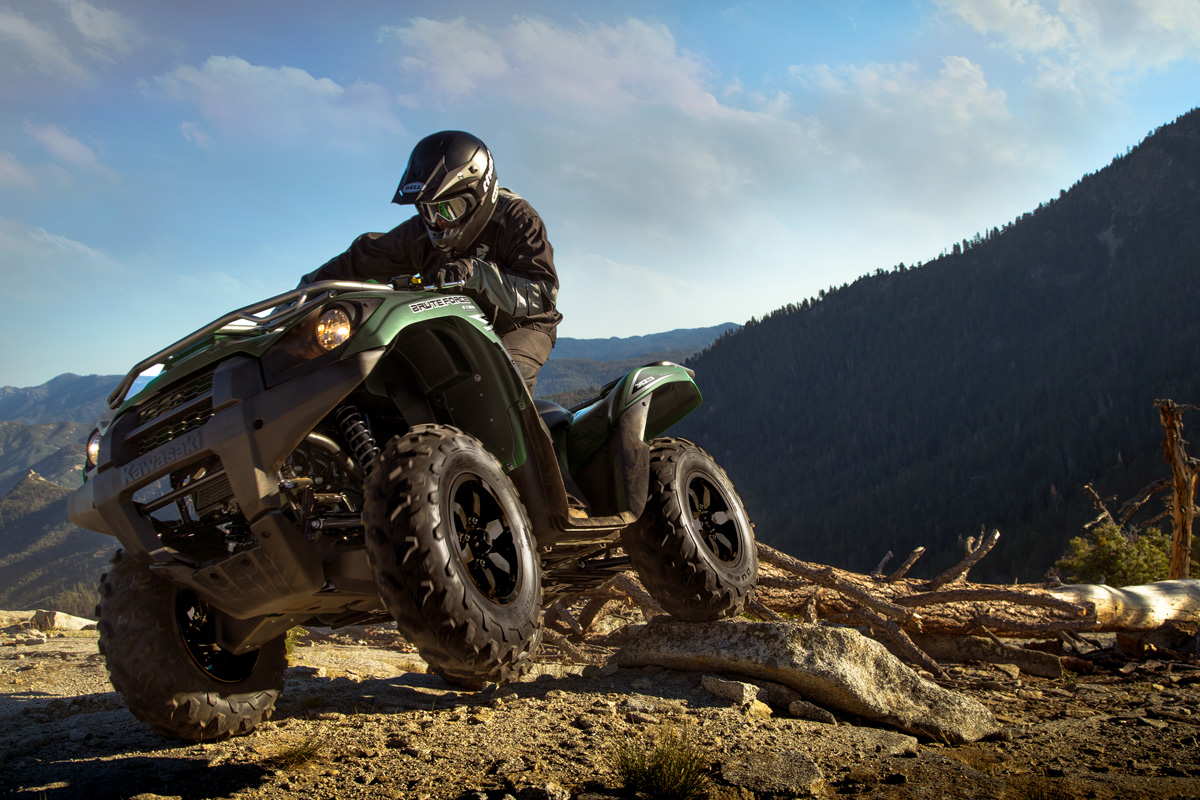 2018 Kawasaki Brute Force 750 4x4i in Danville, West Virginia