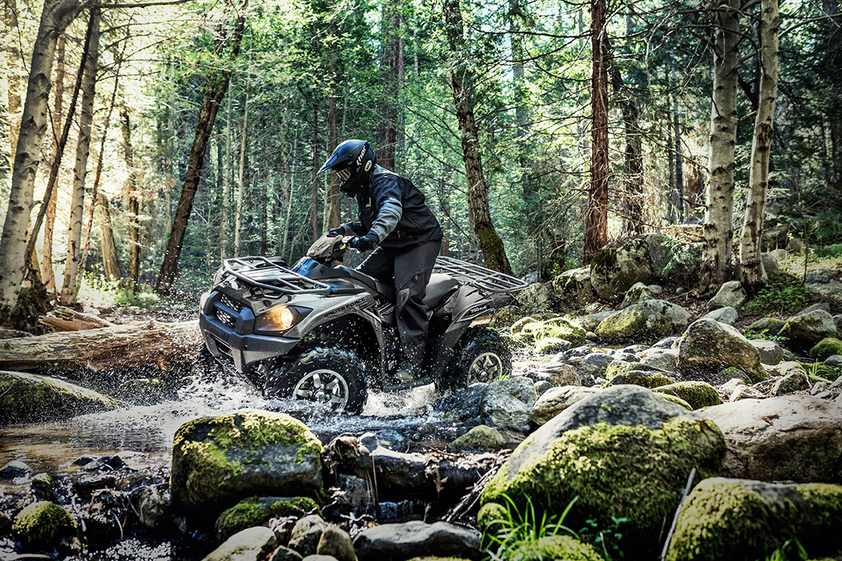 2017 Kawasaki Brute Force 750 4x4i EPS in Albemarle, North Carolina