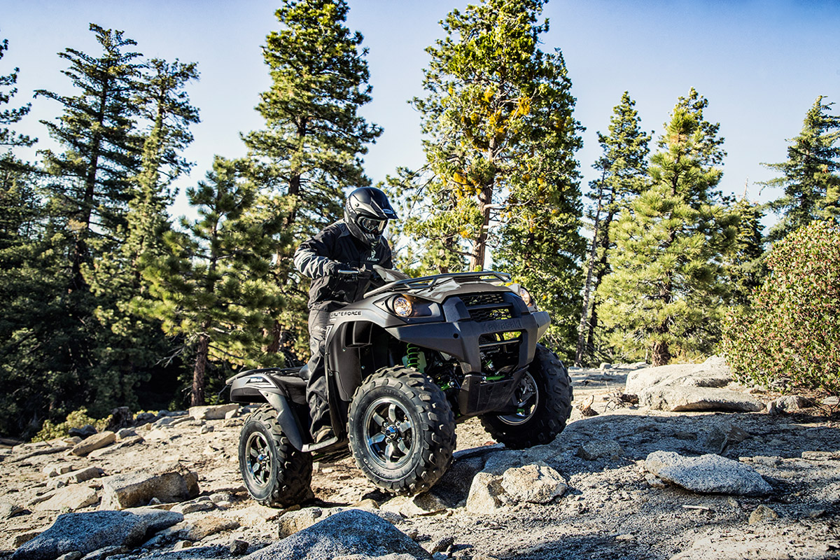 2017 Kawasaki Brute Force 750 4x4i EPS in De Forest, Wisconsin