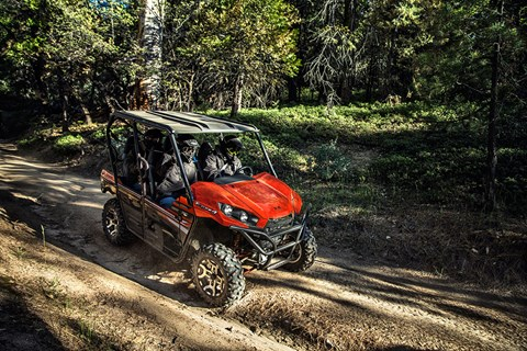 2017 Kawasaki Teryx4 LE in Fort Pierce, Florida