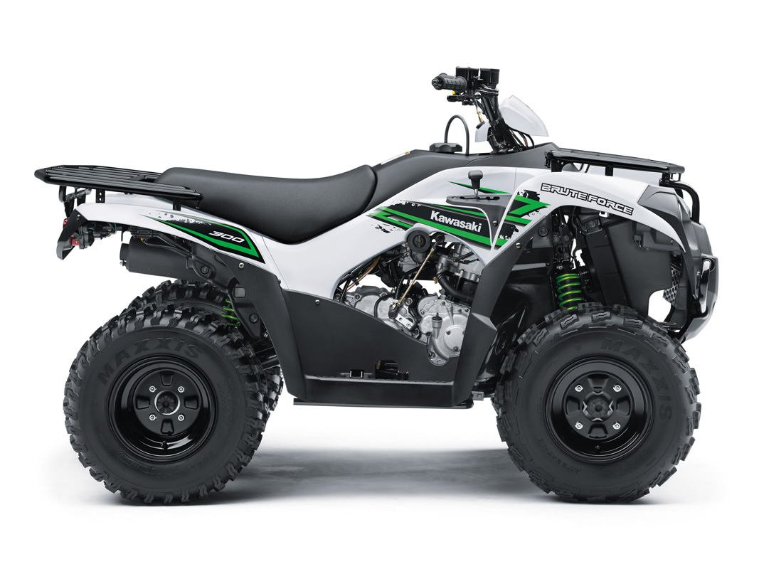 2018 Kawasaki Brute Force 300 in Mount Vernon, Ohio